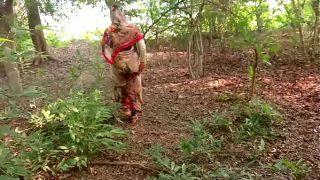 जंगल में मॅंगल राझासटानी सेक्स स्कॅंडल